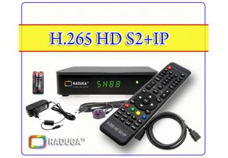 H.265 HD S2+IP*